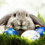 22.04. Osterfest für Kinder